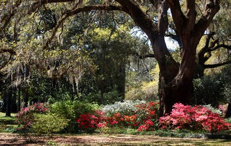 13 Reasons Why Florida Isn't Just For Snowbirds