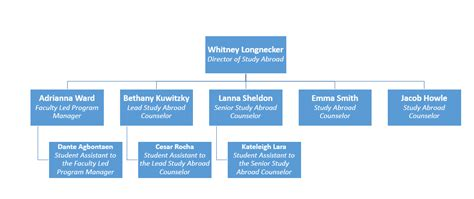 Study Abroad Organizational Structure | Study Abroad Team